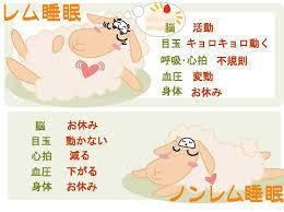 yjimage (5).jpgのサムネイル画像